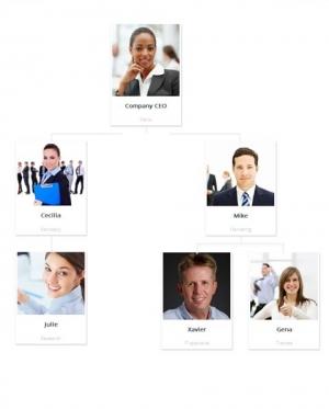 Team Chart - Структура фирмы